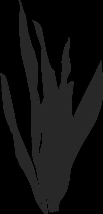 feuillage-gris